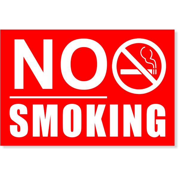 "Underlined NO SMOKING Sign   4"" x 6"""
