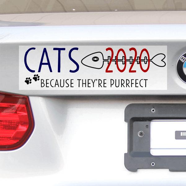 "Cats 2020 Bumper Sticker   3"" x 10"""