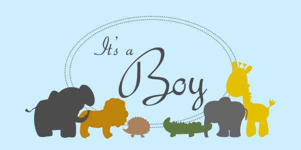 It's a Boy Zoo Animals Baby Shower Banner