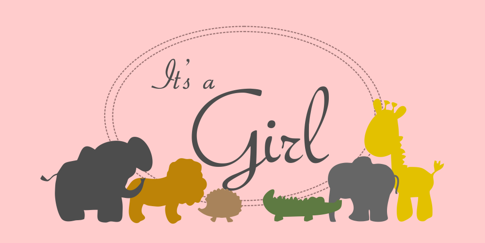 Zoo Animals Baby Shower Banner for Girl